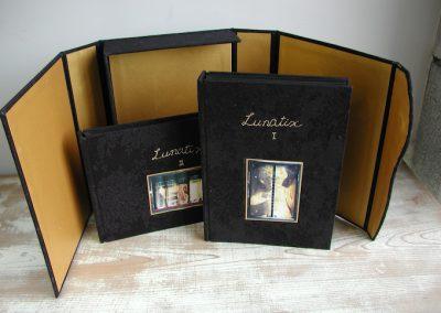 31 LUNATIX-やわらかい月の破片